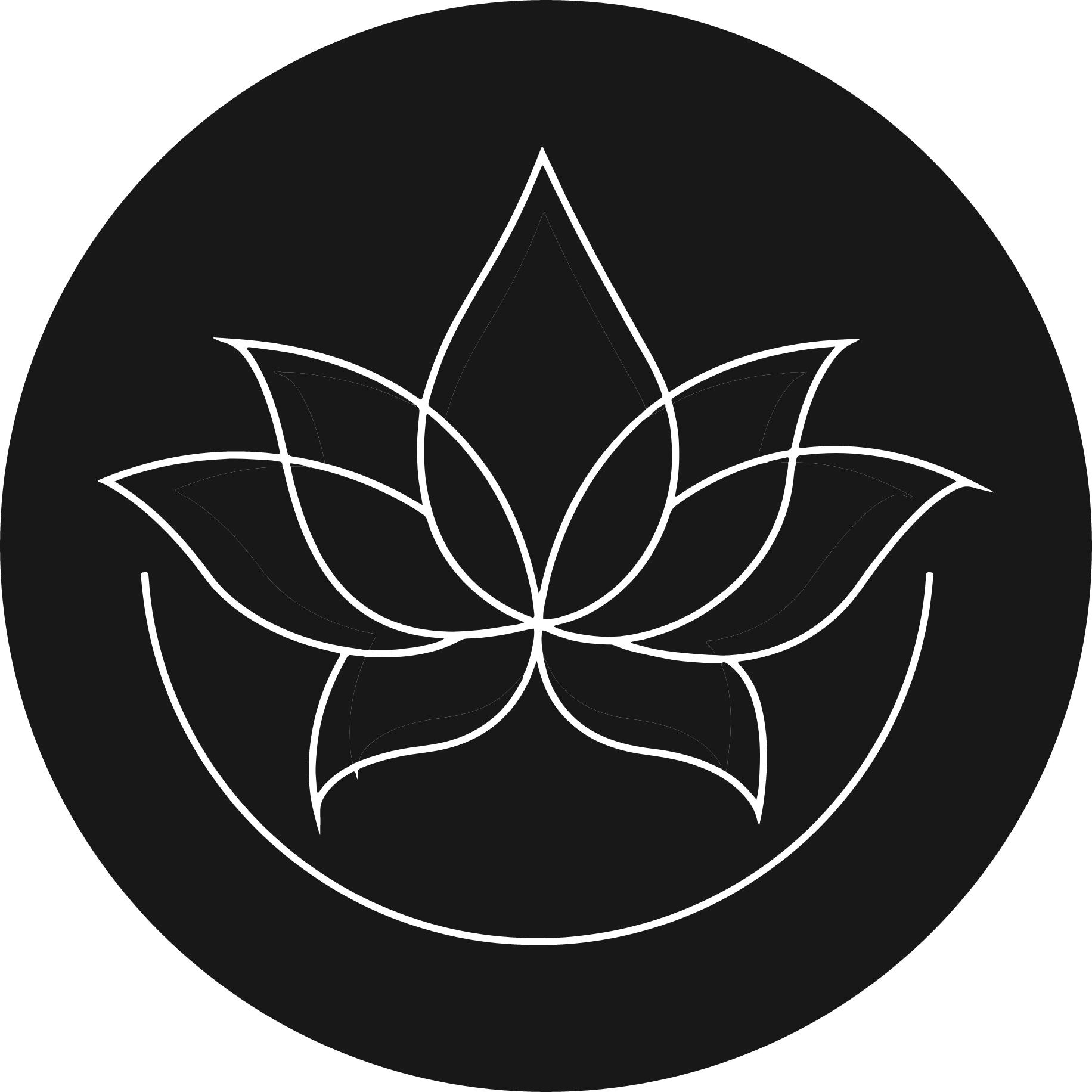 Icon accès au Site web Sonia Sakki